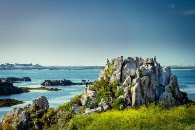 Daudzās saliņas, uz kurām nonākot, tiec novērots no dažādiem skatu punktiem, vietām un radībām. Bretaņa.