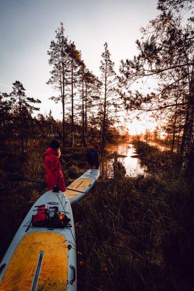 SUP dēļu saullēkta brauciens, no viena kanāla citā. Ķemeru nacionālais parks, 2018.